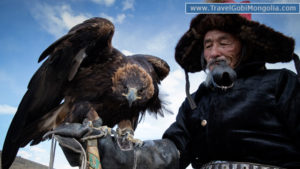 a kazakh man holding his eagle on the hand