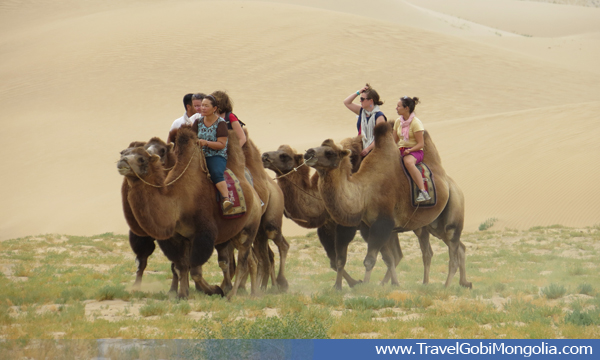 camel riding in Gobi Desert