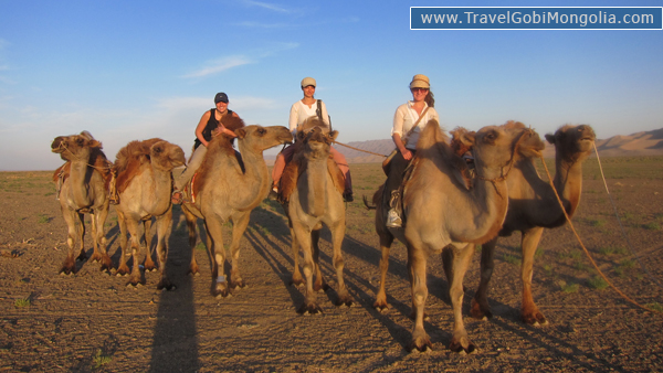 our 3 customers are on the camel in Khongor Sand Dune