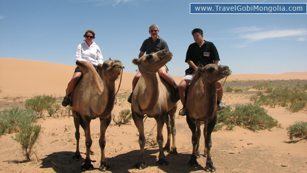 our guide & our 2 customrers are riding camels in Gobi Desert