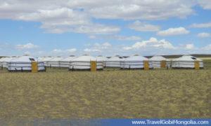 gers of Gobi Erdene TGC